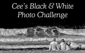 Cee's Black & White Photo Challenge.